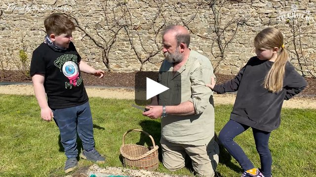 Video frame of Dick, Arthur and Dorothy cutting asparagus, link to full video